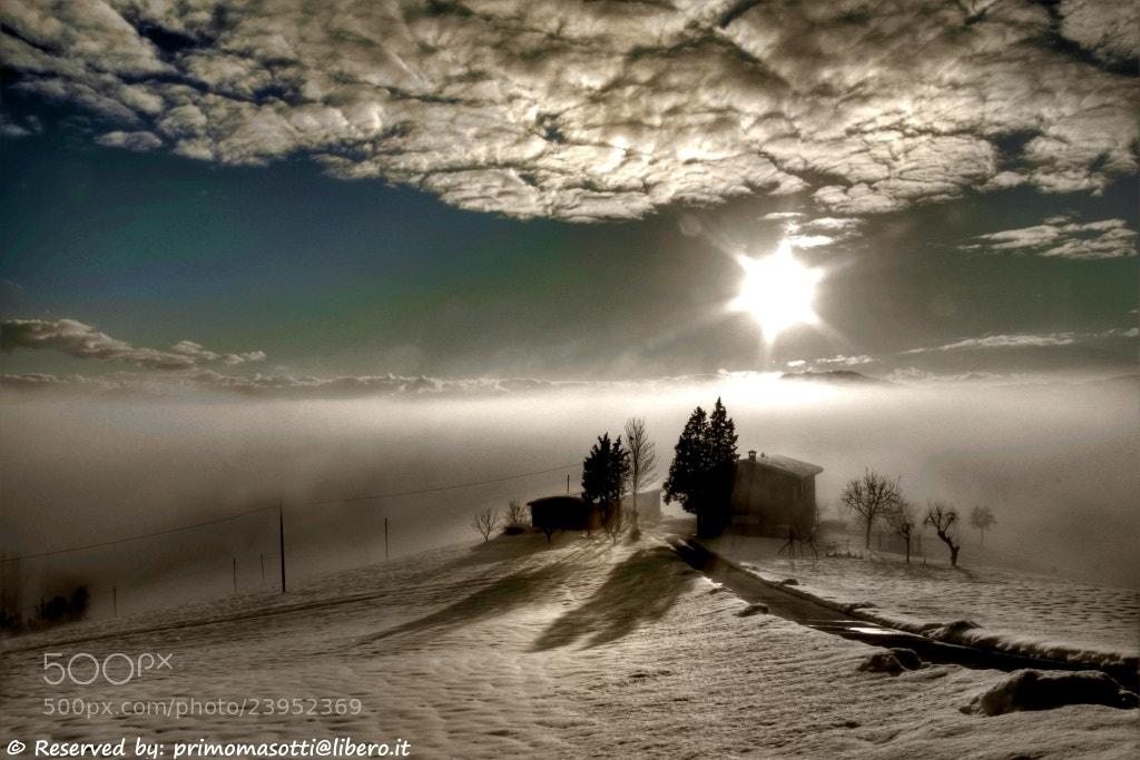 Photograph Samone _8006_ dvd 15 by primo masotti on 500px