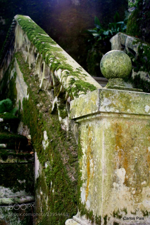 Photograph Quinta da Regaleira by Carlos Pais on 500px