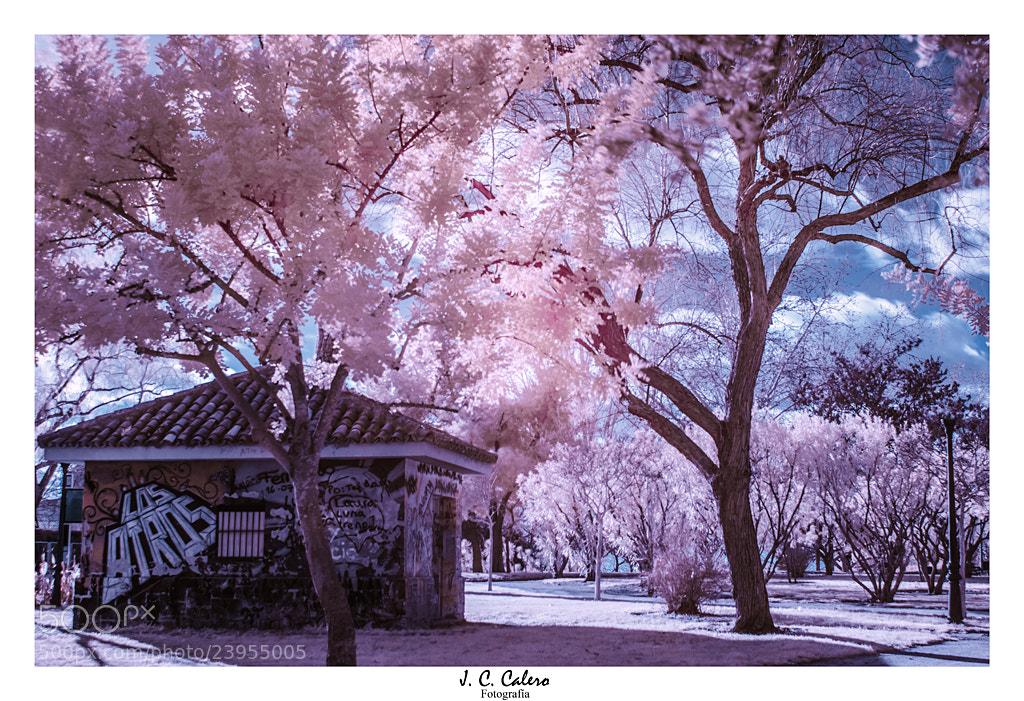 Photograph Colores que no se ven by Juan Carlos Calero on 500px