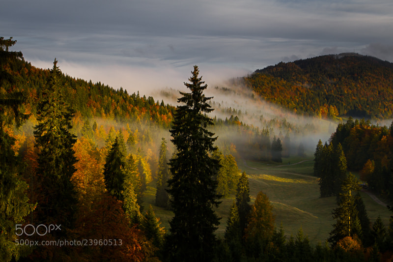 Photograph Brumes d'automne dans la vallée by Fabrizio Cantinotti on 500px