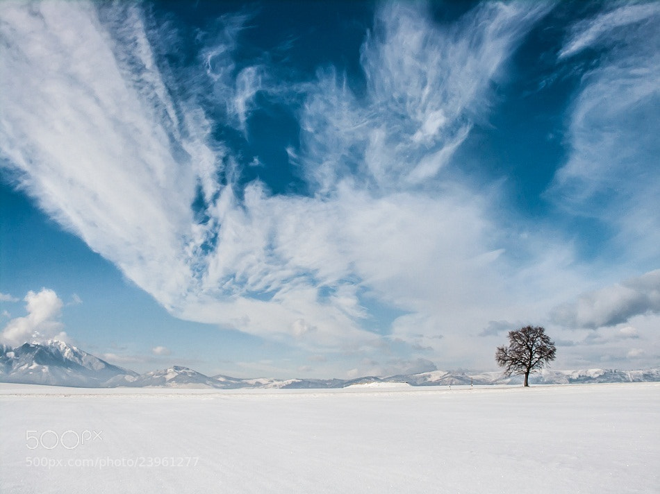 Photograph Winter  by Jozef Mačutek  on 500px