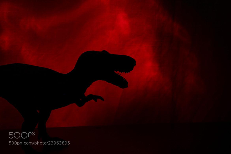 Photograph Dino by Mehmet Gurel on 500px