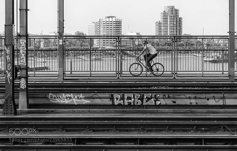 Photograph Morning in Cologne by Anna Shklyaeva on 500px