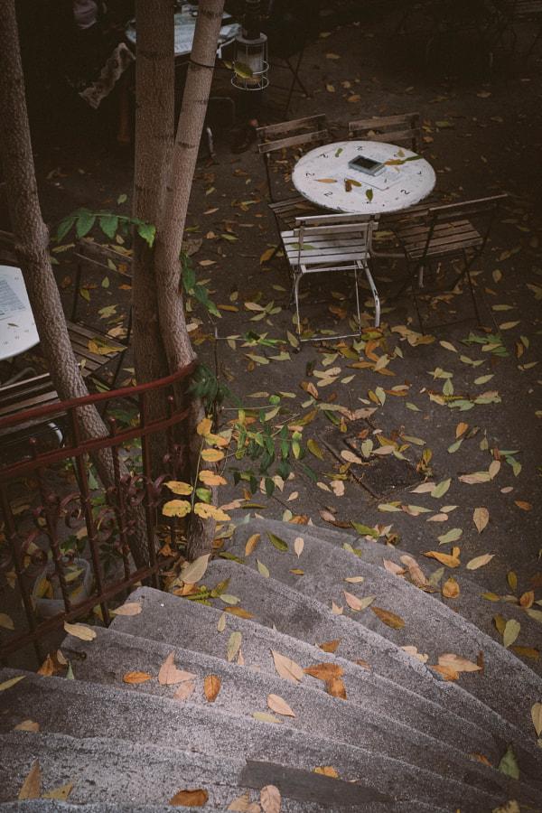 OCT Bucharest Autumn
