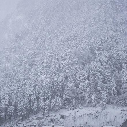 Arinsal Snow