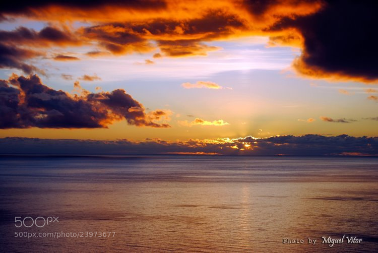 Photograph Fluffy Sunset by Miguel Vitor on 500px