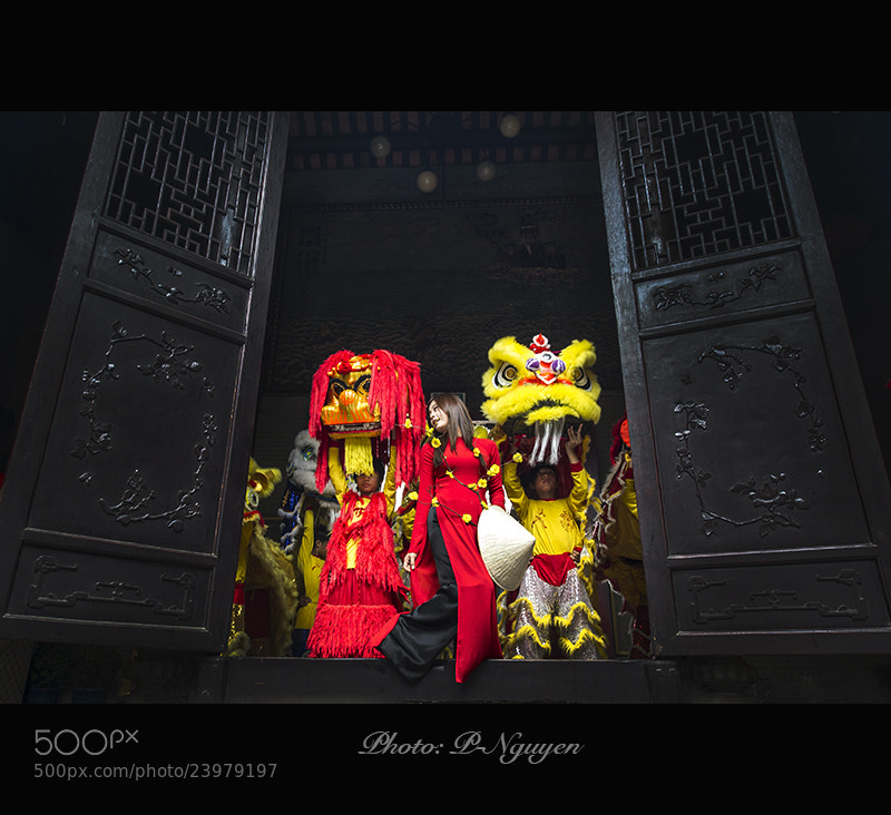 Photograph Lunar New Year-Viet Nam by p -nguyen on 500px