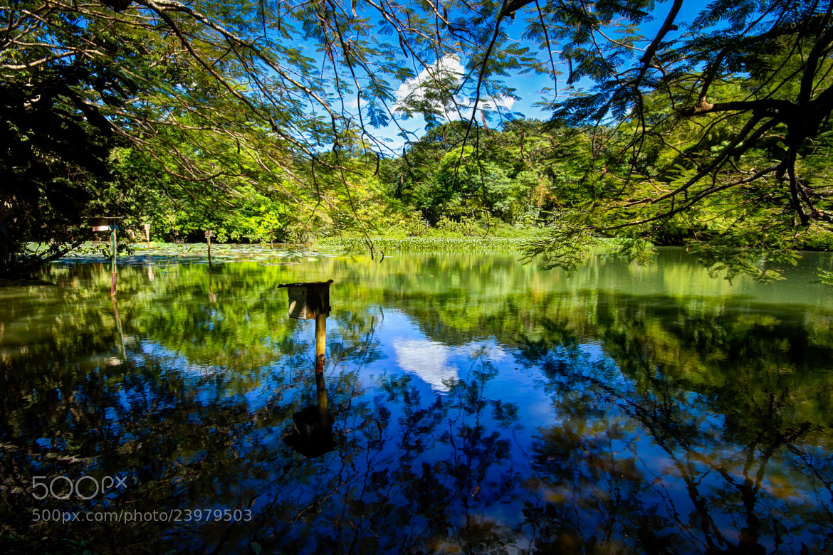 Photograph REFLECTIONS by Stepphan Mc Pherson on 500px