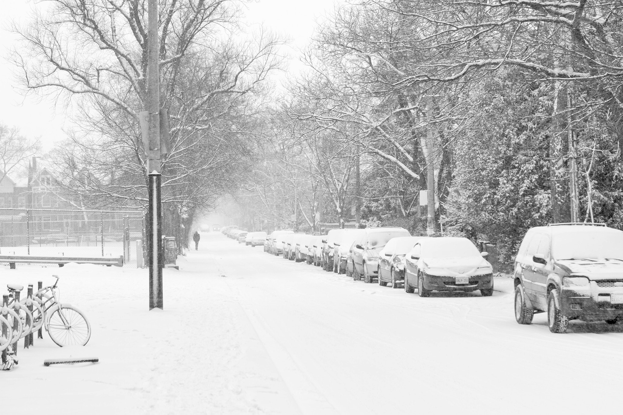 Photograph Snowfall in Toronto by Ash Furrow on 500px