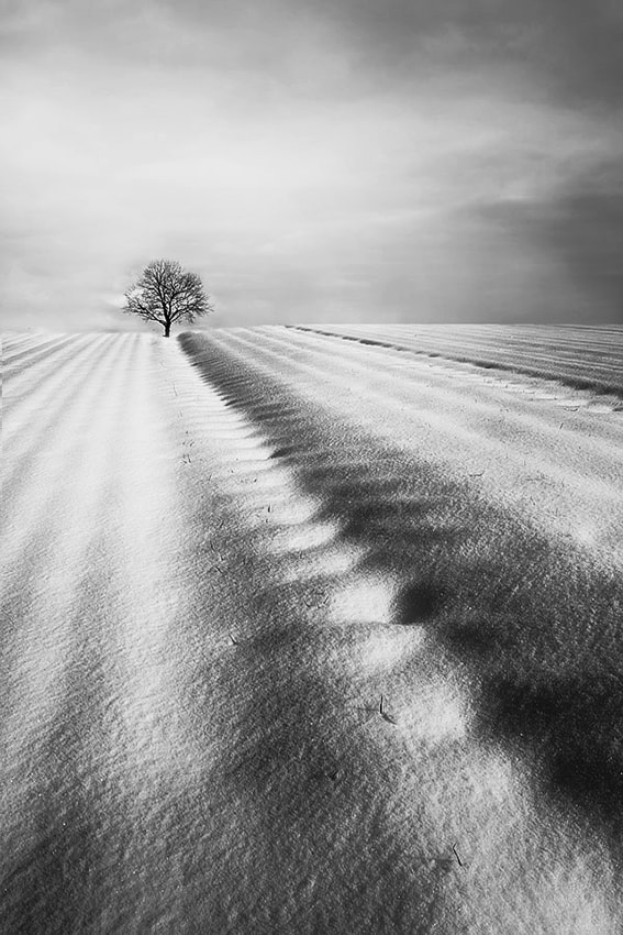 Photograph winter by Miroslaw Brzozowski on 500px