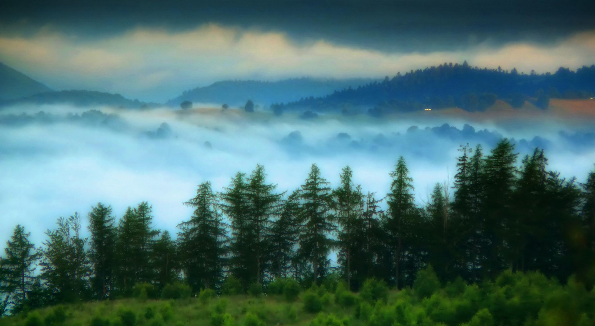 Photograph Misty morning by Roman Vanur on 500px