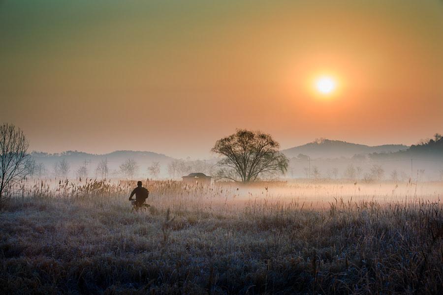 Going home, автор — moonriver  на 500px.com