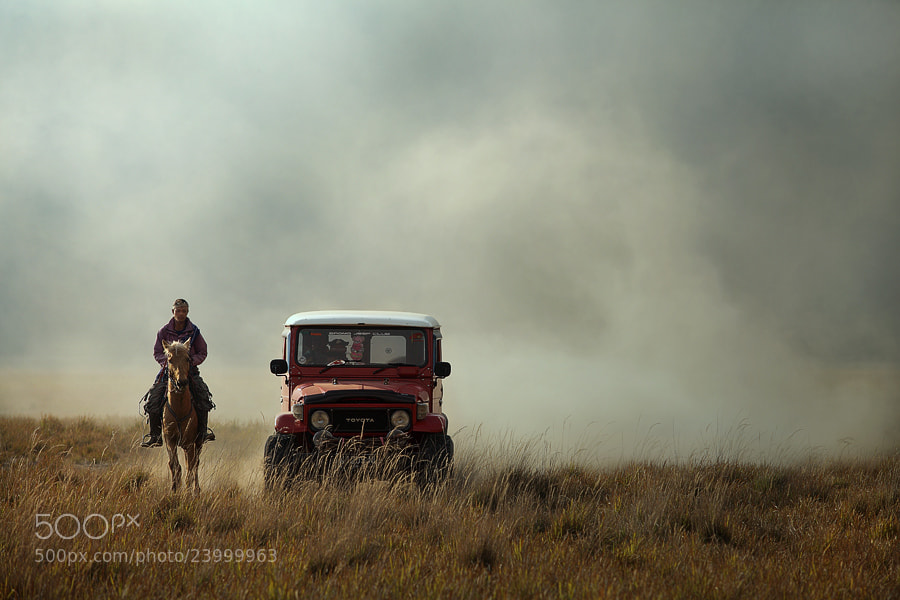 Photograph horse power by taufik sudjatnika on 500px