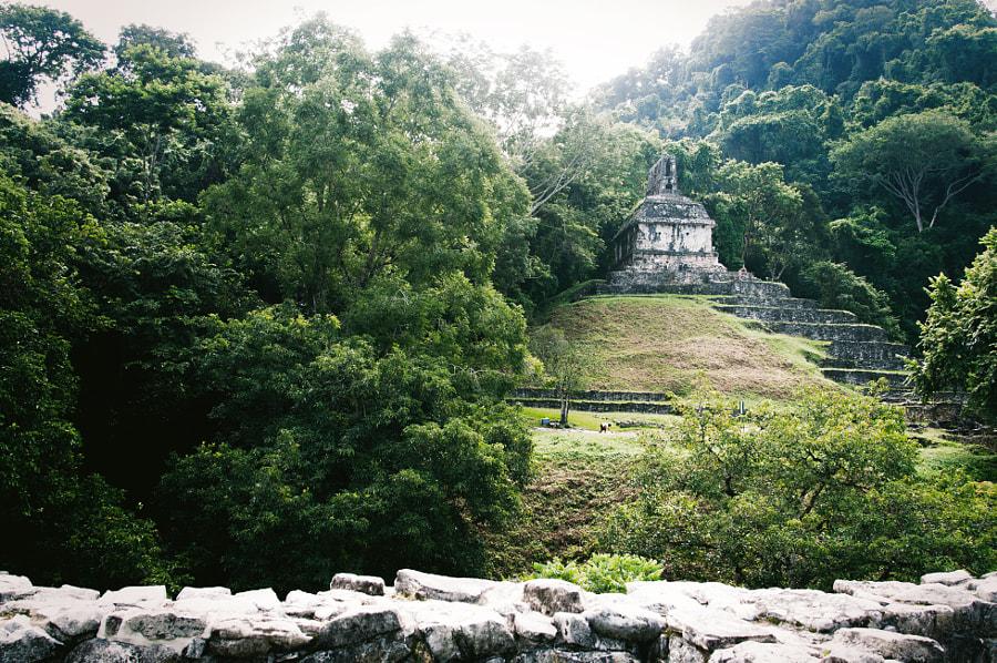 Blätterkreuztempel – Palenque Maya Ruines by Cattiva Kat on 500px.com