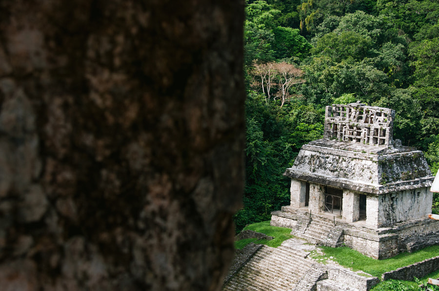 Palenque Sonnentempel by Cattiva Kat on 500px.com