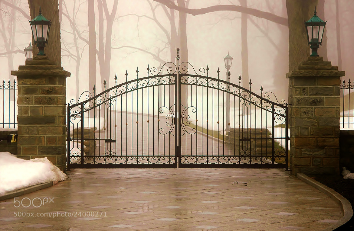 Photograph Haunting Gate by Lise Bennett on 500px