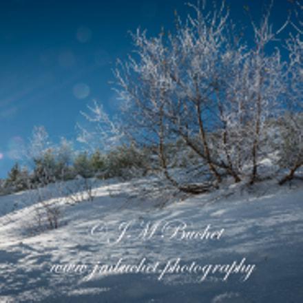 Sun and Snow !