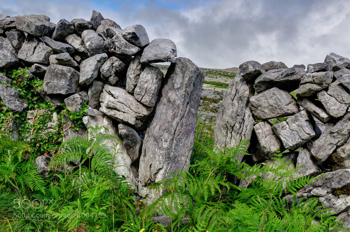 Photograph The Burren by Bill Brown on 500px