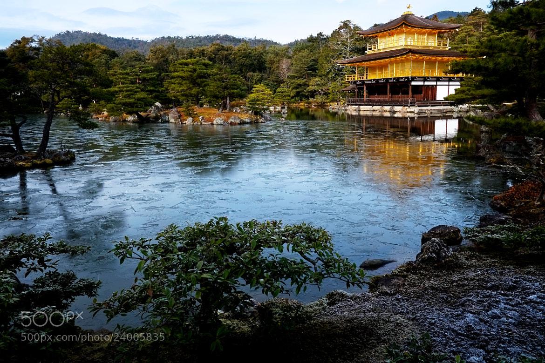 Photograph Kinkakuji Temple by Tsunehiko Isaka on 500px