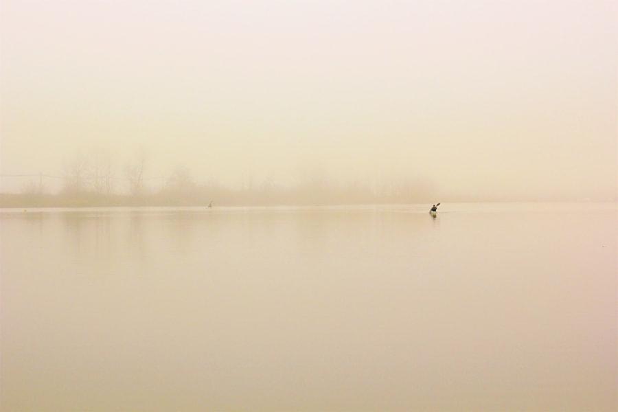 IN THE FOG -- 雾中游, автор — Li Zhao на 500px.com