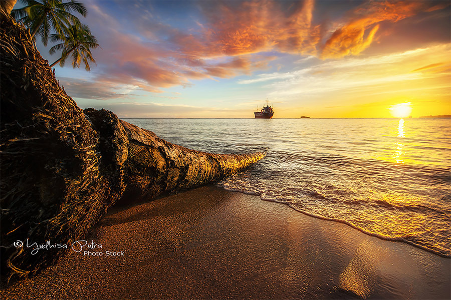 Photograph Strong Sun by Yudhisa Putra on 500px