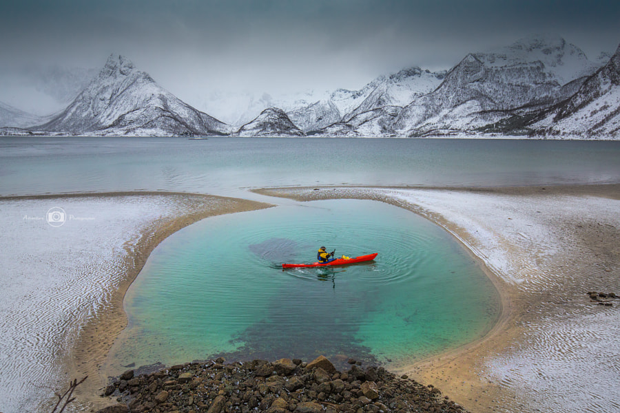 Green Pool Paddler, автор — Björn Nehrhoff на 500px.com