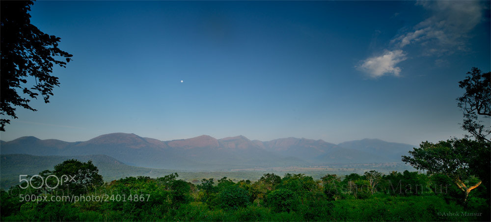 Photograph Tiger Reserve  by Ashok Mansur on 500px