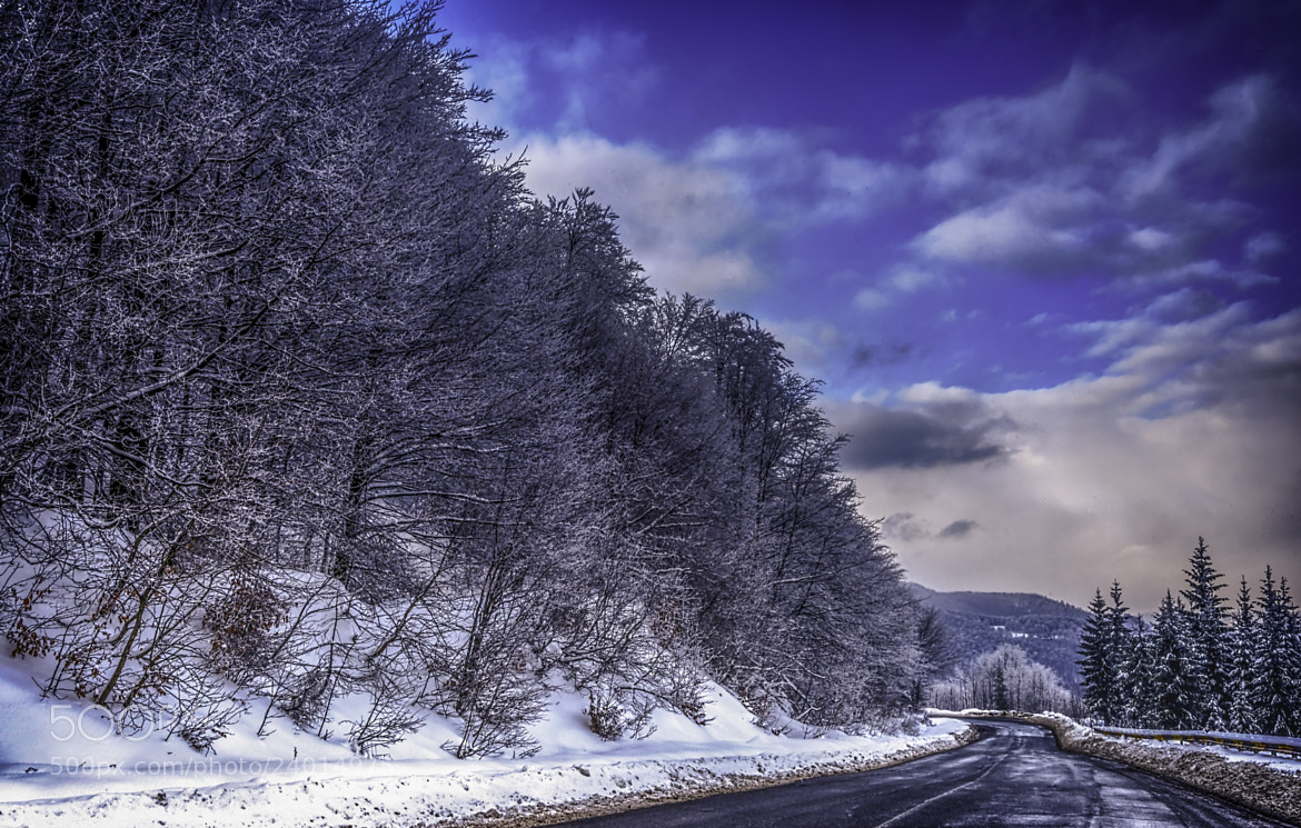 Photograph Winter road by Sorin Markus on 500px