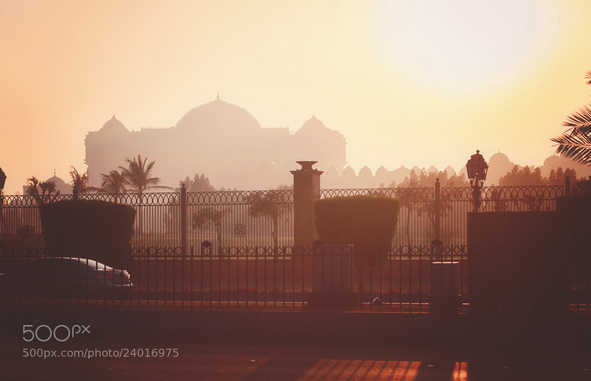 Photograph Untitled by safa kamar on 500px