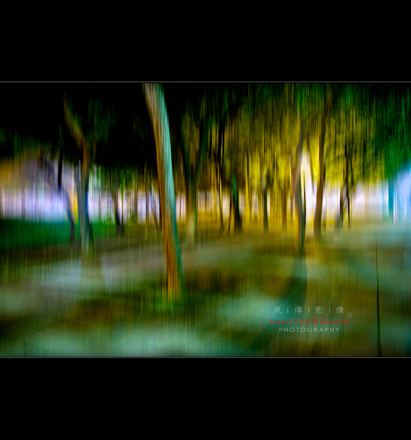 Photograph Woods in the Night by SUNRISE@DAWN photography 風傳影像 on 500px