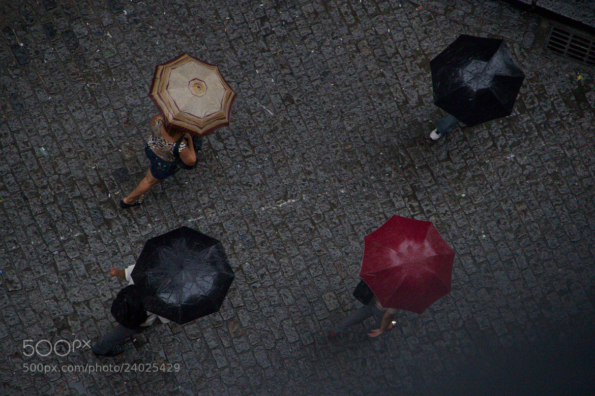 Photograph Rain2 by Bruno Ottati on 500px