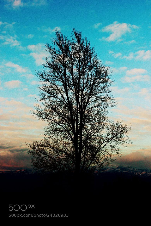 Photograph tek başına... by hakan esmeray on 500px