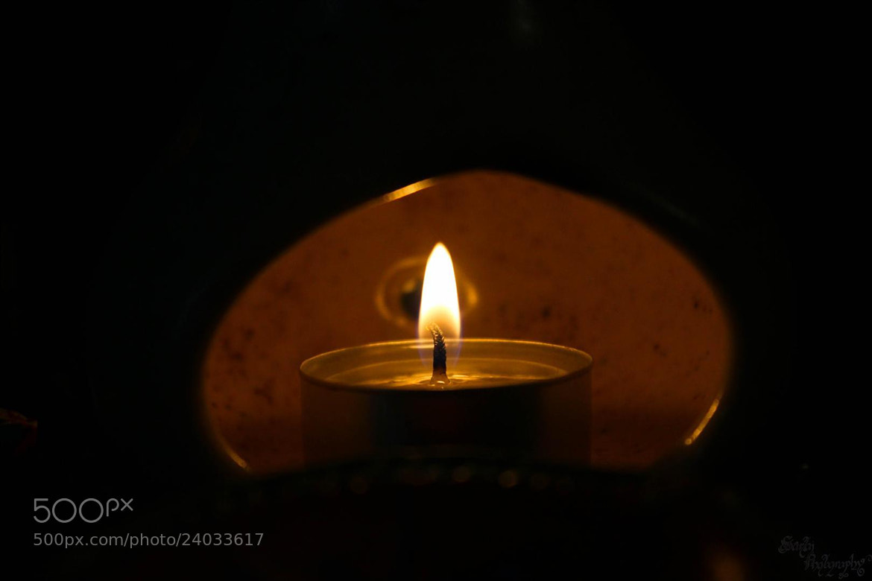 Photograph Light of Hope. by Sartaj Singh on 500px