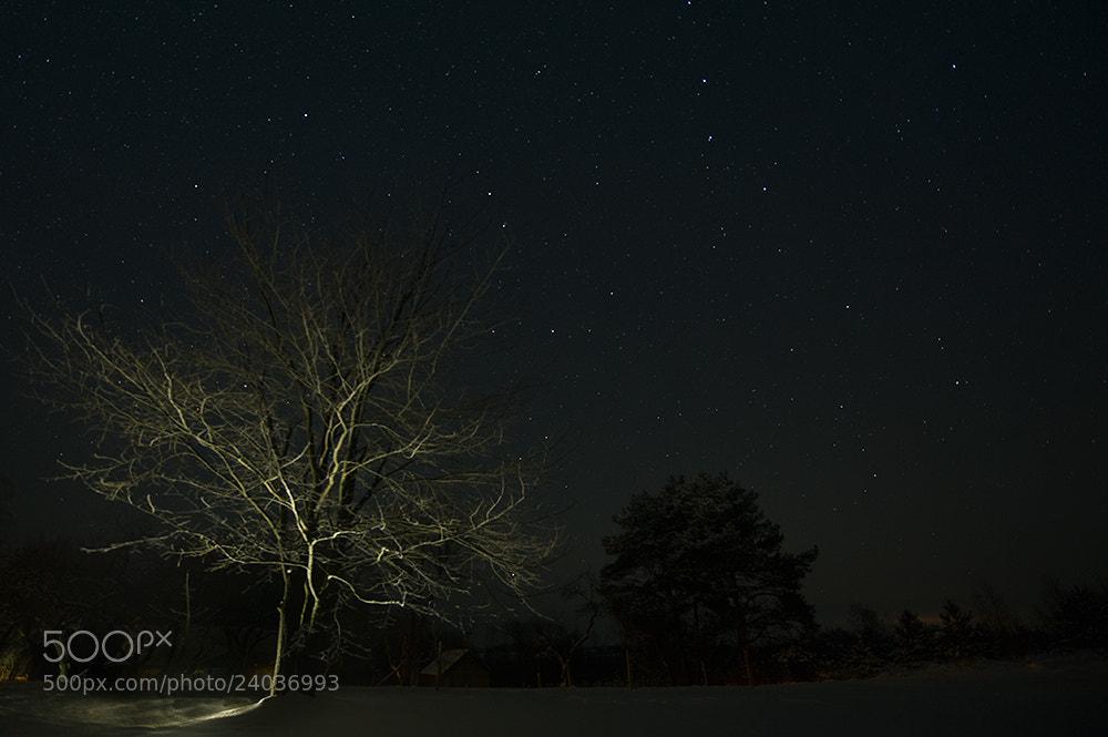 Photograph Night Lights by Valdas Vrubliauskas on 500px