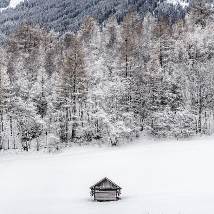 Landscape in the snow, Ladis