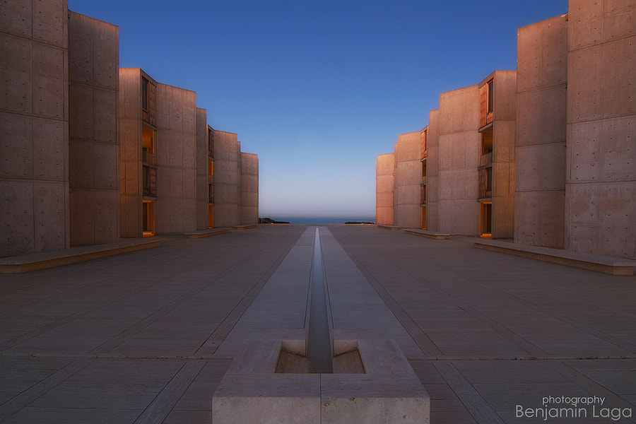 Photograph Pink Salk by Benjamin Laga on 500px