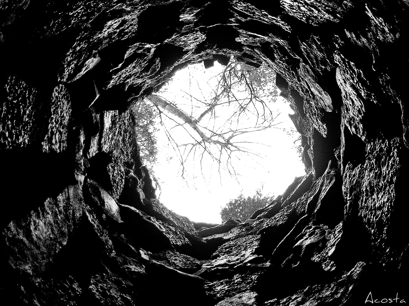 Photograph Saliendo del agujero.../out of the hole... by Alicia Acosta on 500px