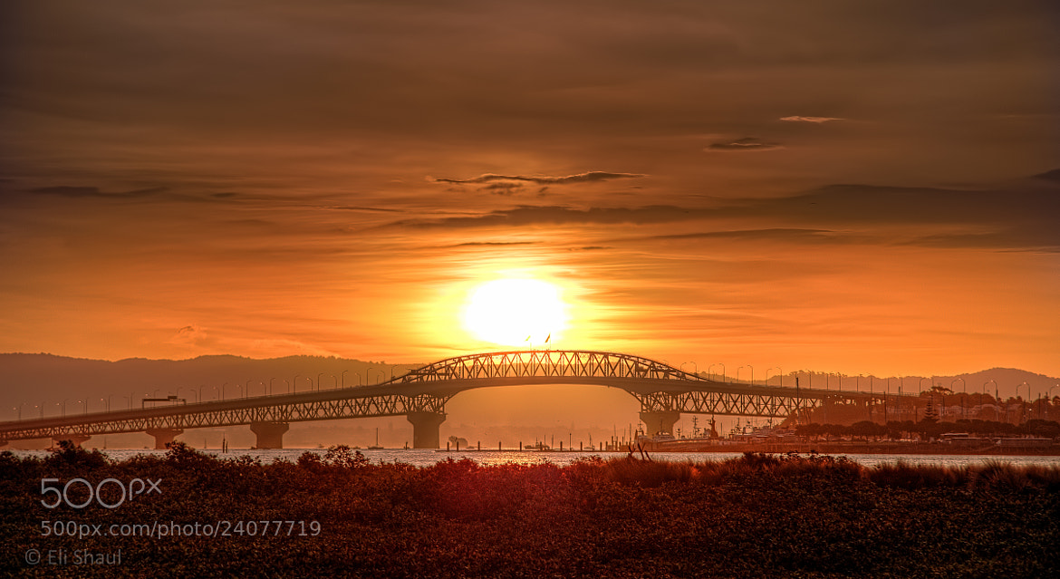 Photograph Sunset over Auckland Harbour Bridge by Eli Shaul on 500px
