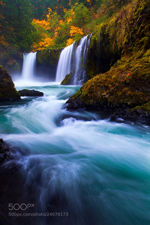Photograph The Spirit of Fall by Jordan Ek on 500px