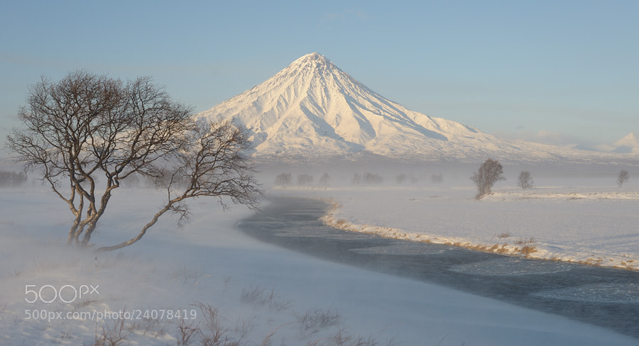 Photograph Blizzard and Kronotsky Volcano (Kronotskaya Sopka). by Igor Shpilenok on 500px