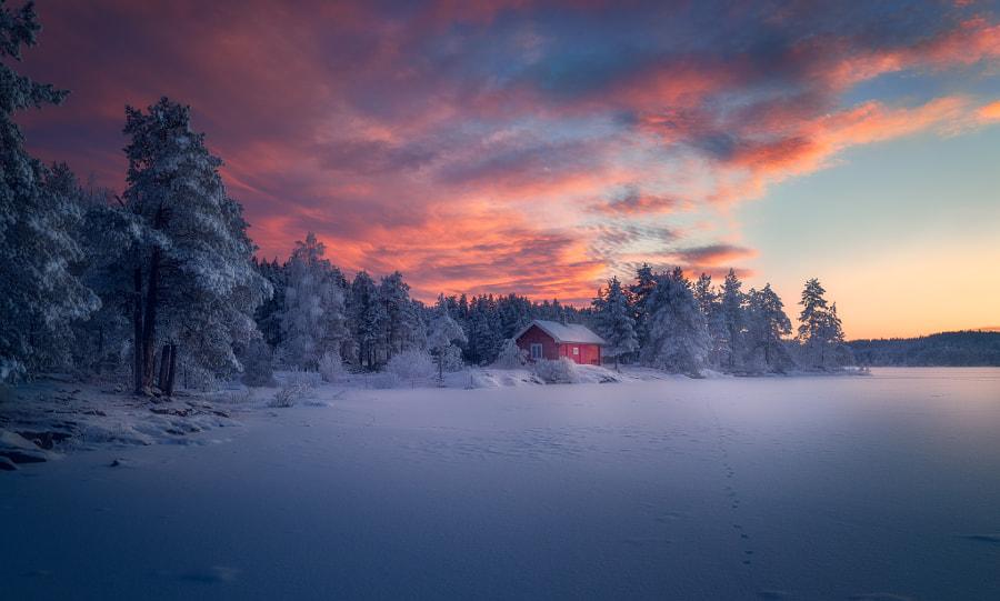 Under a Red Sky by Ole Henrik Skjelstad on 500px.com