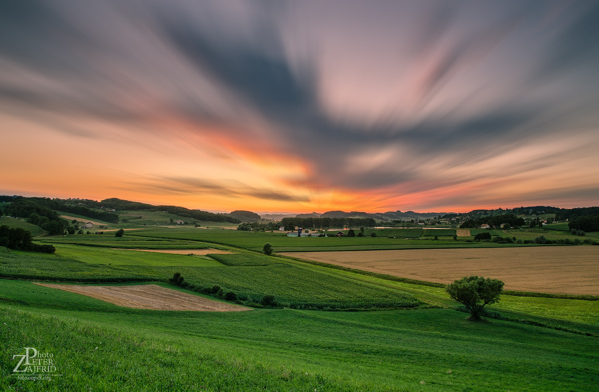 Photograph Summer evening by Peter Zajfrid on 500px