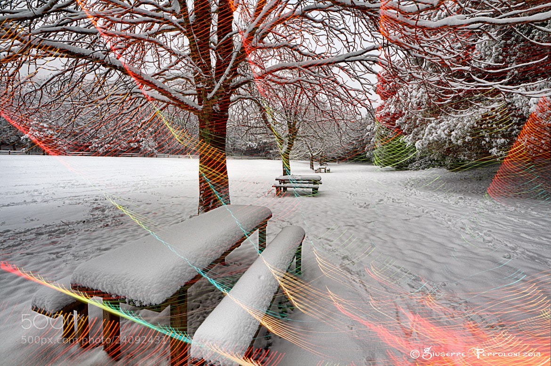 Photograph The snowfall by Giuseppe  Peppoloni on 500px