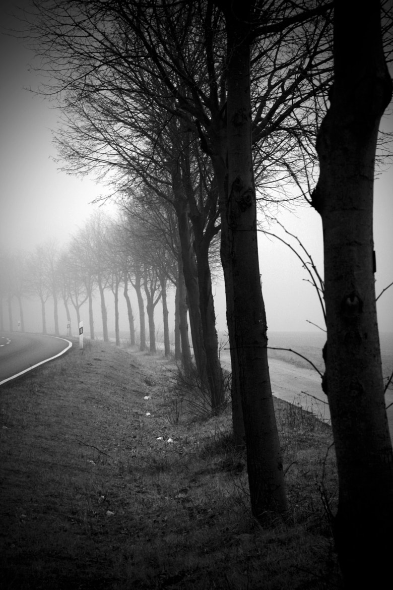 Photograph cloudy senses, foggy sights. by beeener . on 500px