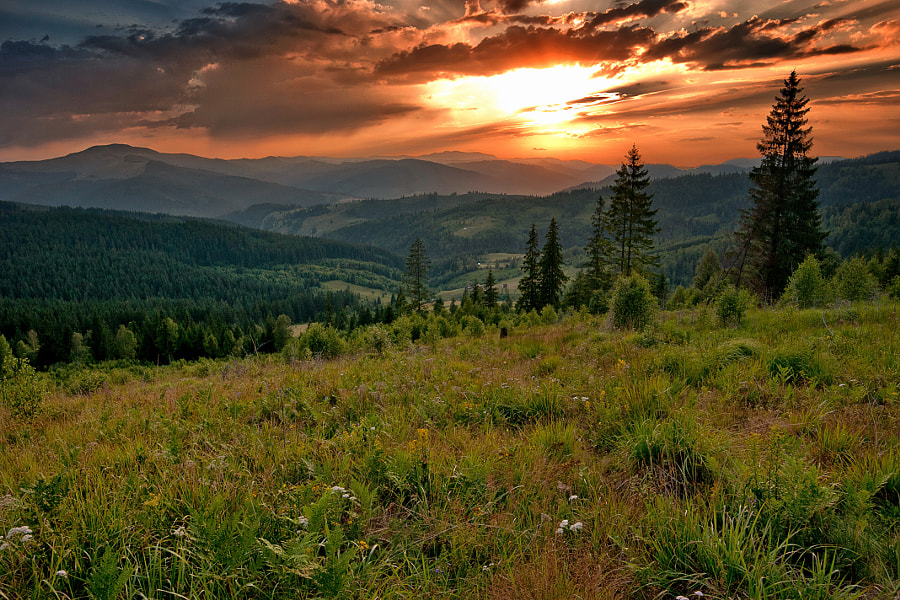 Sunset by Dumitrescu Catalin on 500px.com