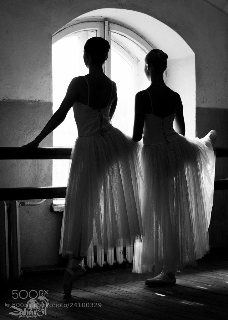 Photograph Untitled by Oleg Zakharchenko on 500px