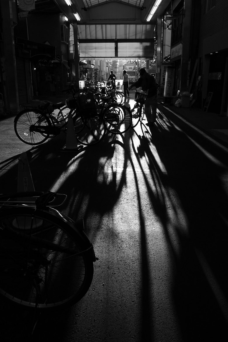 Photograph Untitled by Masanory Toyoda on 500px
