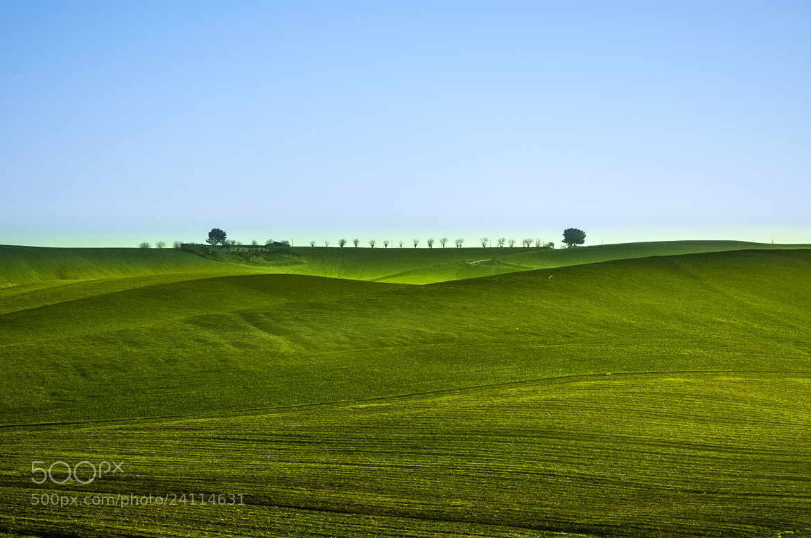 Photograph Queued up by Hermes S on 500px