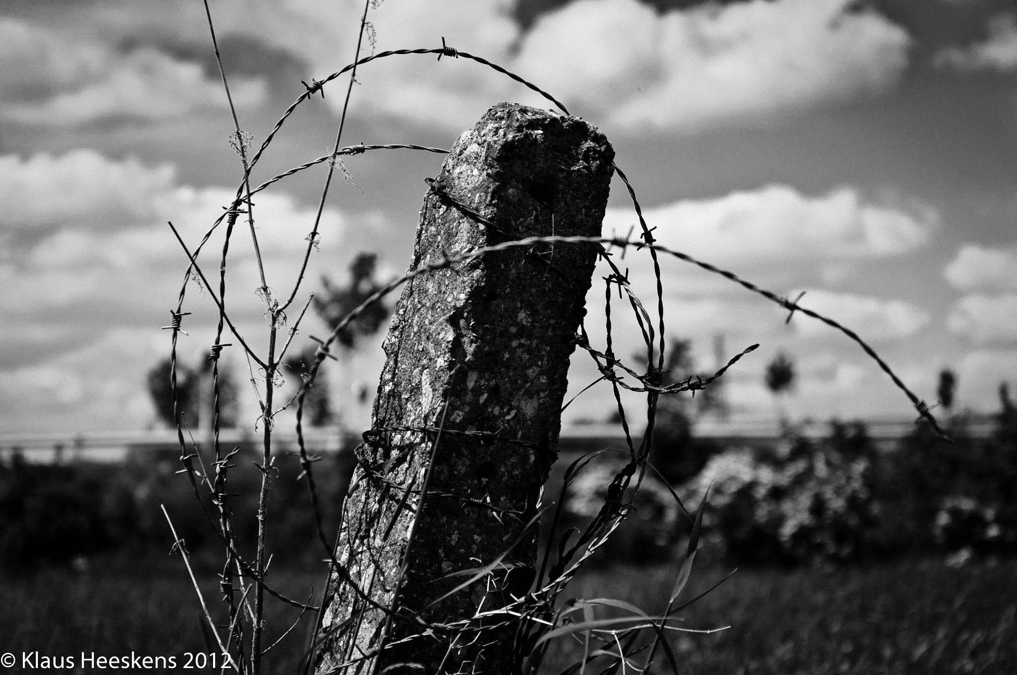 Photograph Barbed wire by Klaus Heeskens on 500px