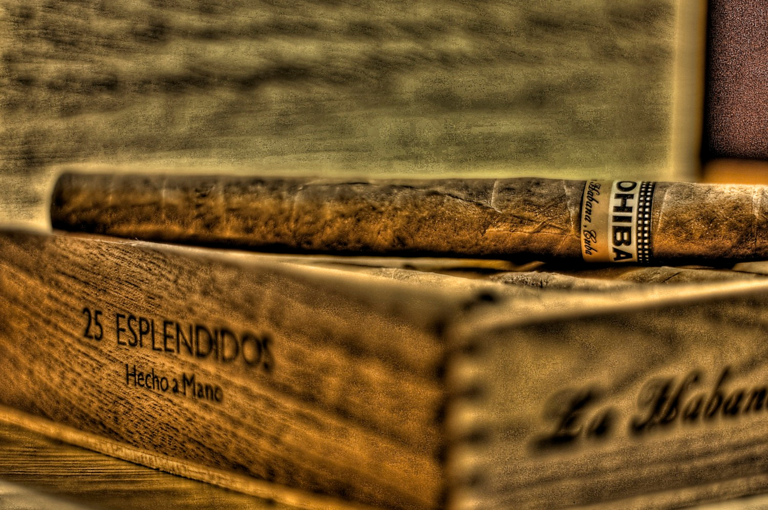 Photograph CoHibA LoVerS... by Ali KoRdZaDeh on 500px
